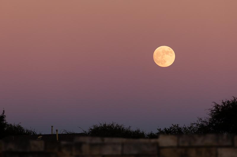 full moon 1026