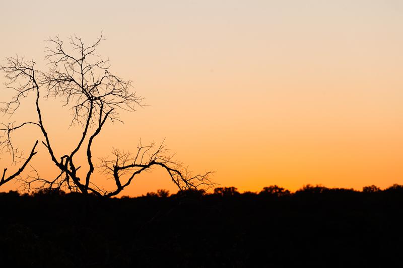 texas sunset 1027