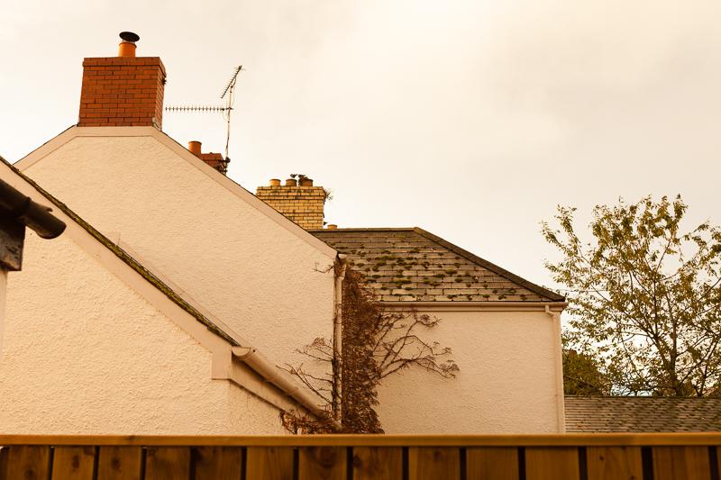 rooftop greyabbey