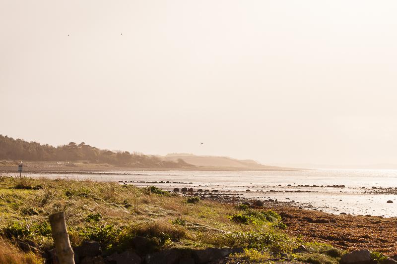 suuny beach