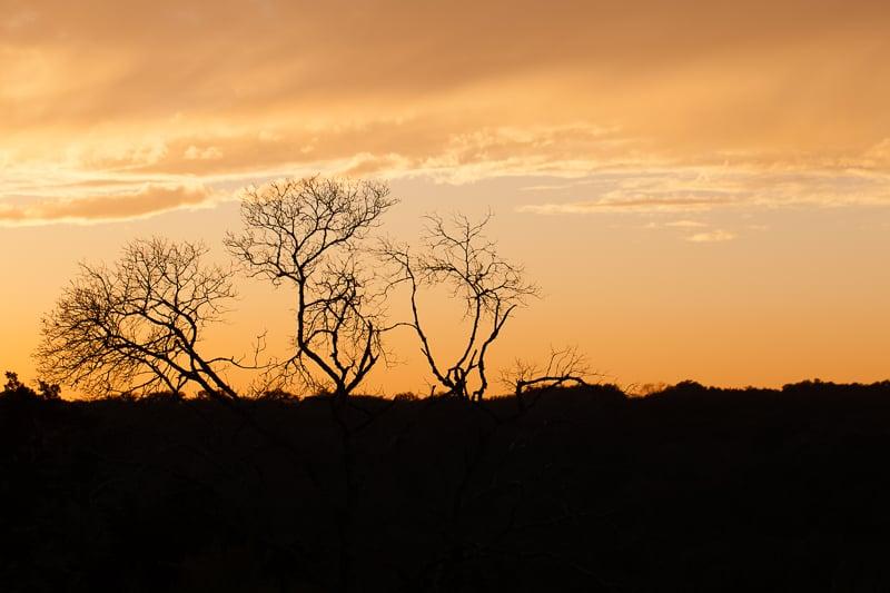 sunset 010816