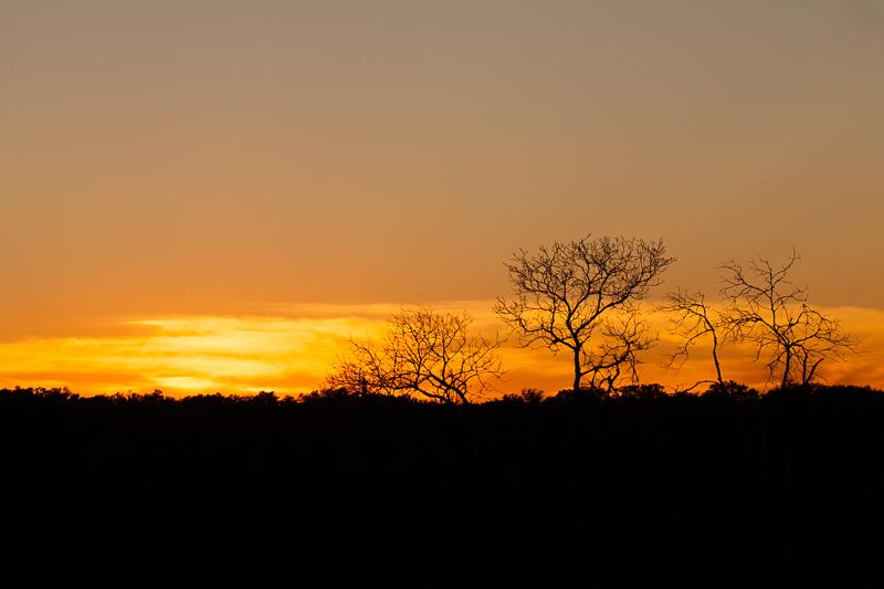 sunset 012316