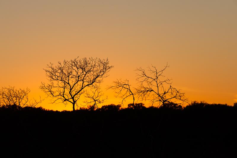 sunset 021316