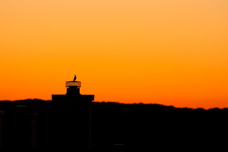 sunset 050316