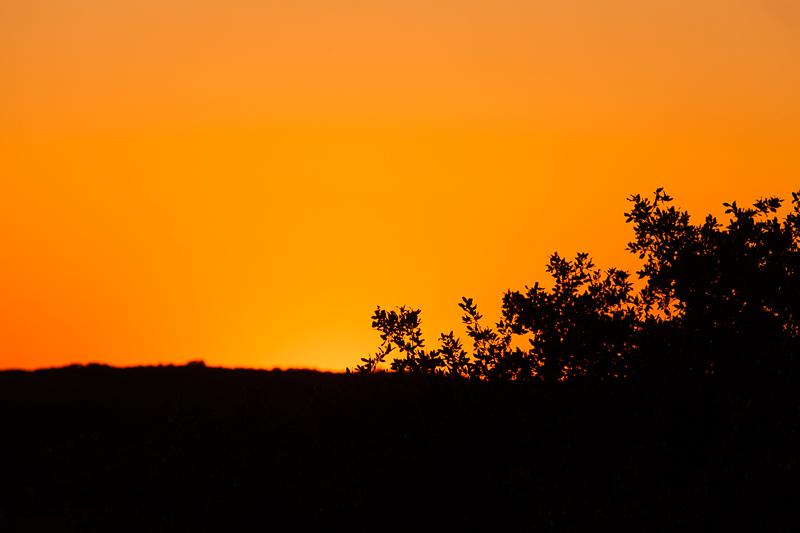 sunset 050616
