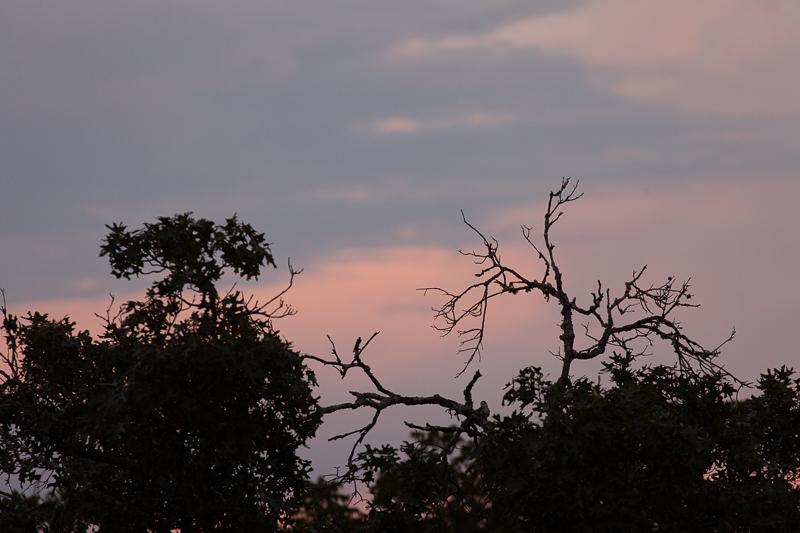 sunset 083016