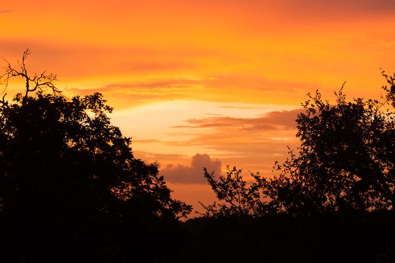 sunrise 083116