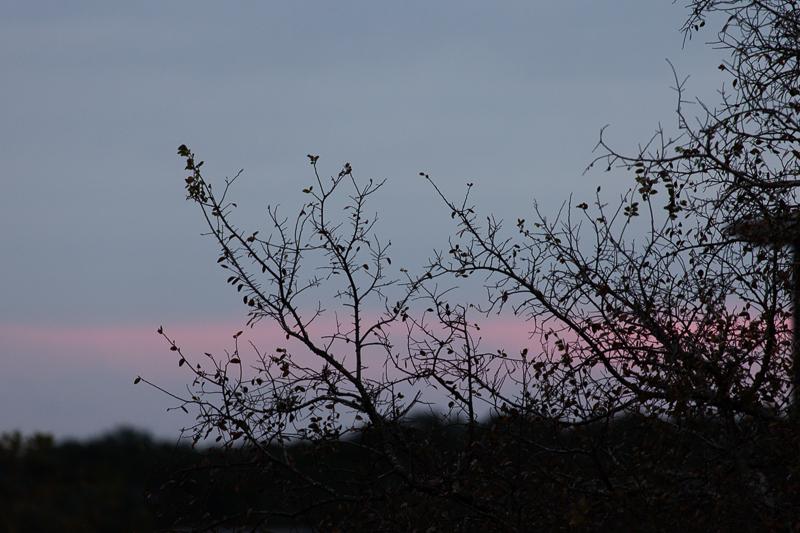 sunrise111816