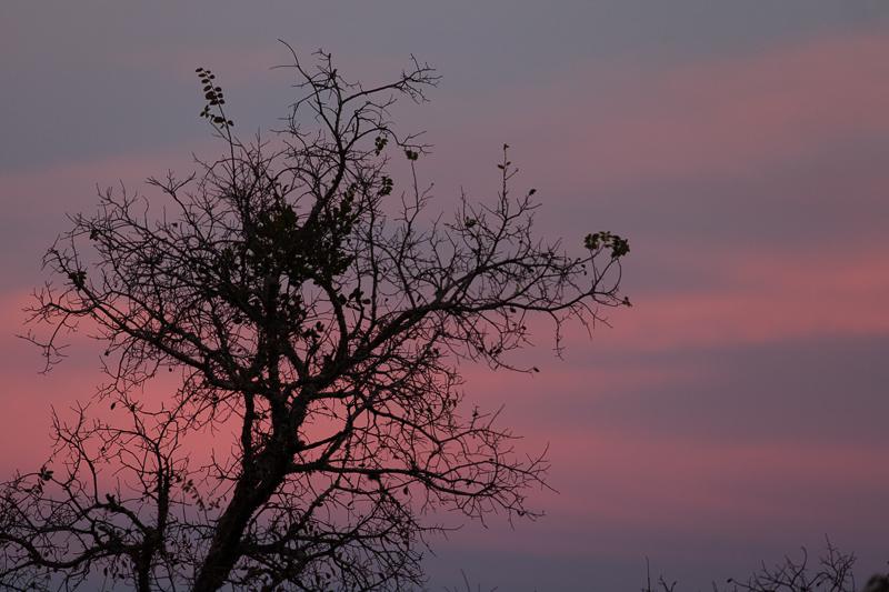 sunset 112816