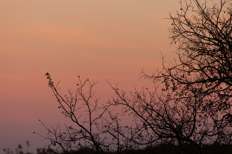 sunset 112916