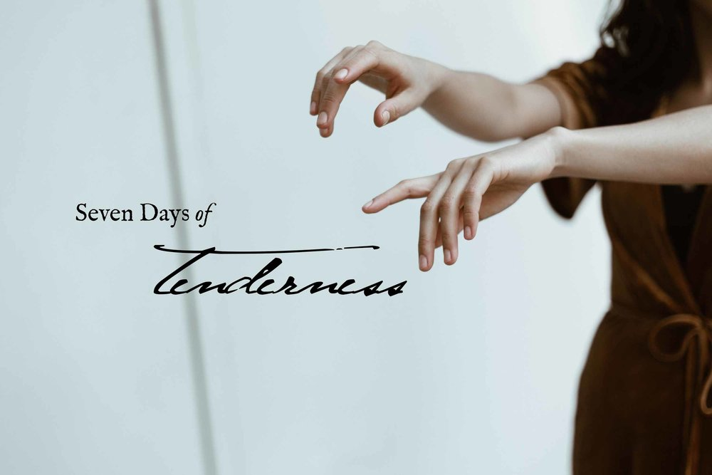 Seven Days of Tenderness: a free email course by Hillary McFarland