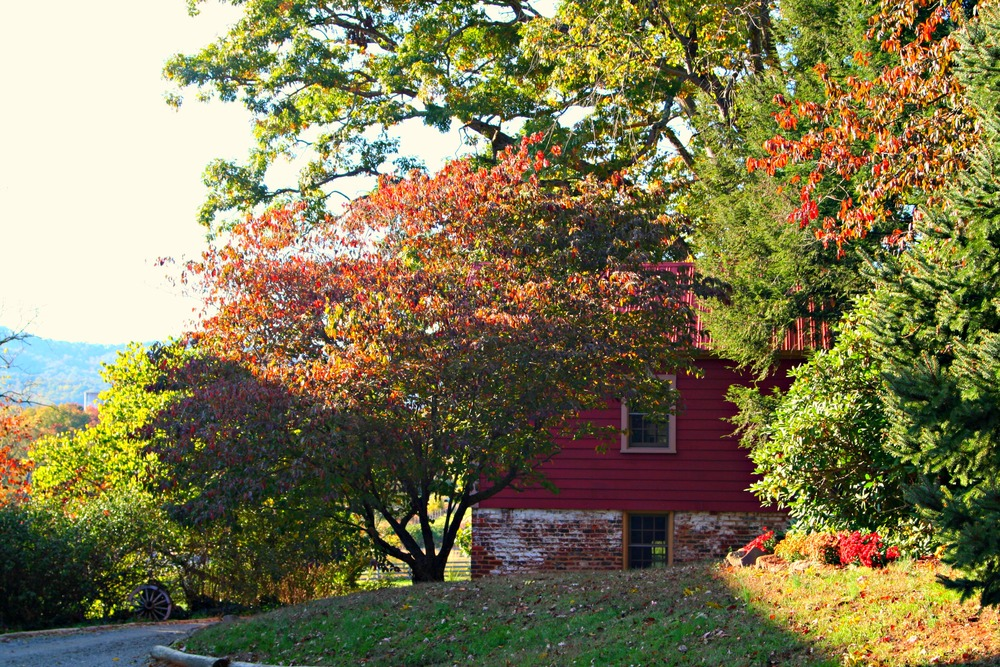 Autumn view of the Summer Kitchen Cottage