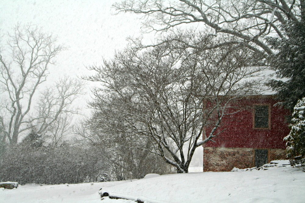 The Summer Kitchen Cottage during a recent snowstorm.