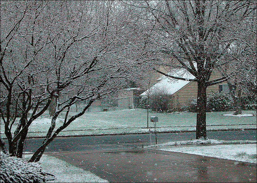 Last Snowfall.jpg