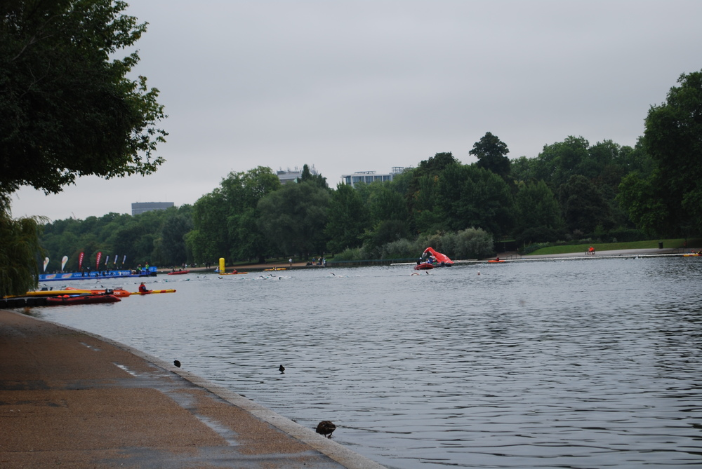 The swim course from the boardwalk of the Serpentine in Hyde Park.