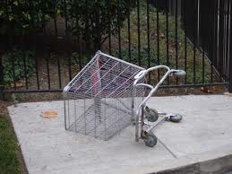 You put a grocery cart in my way and I will run it over just like this one.
