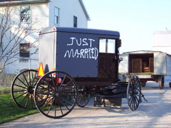 Zerr.Just-Married-Buggy.jpg