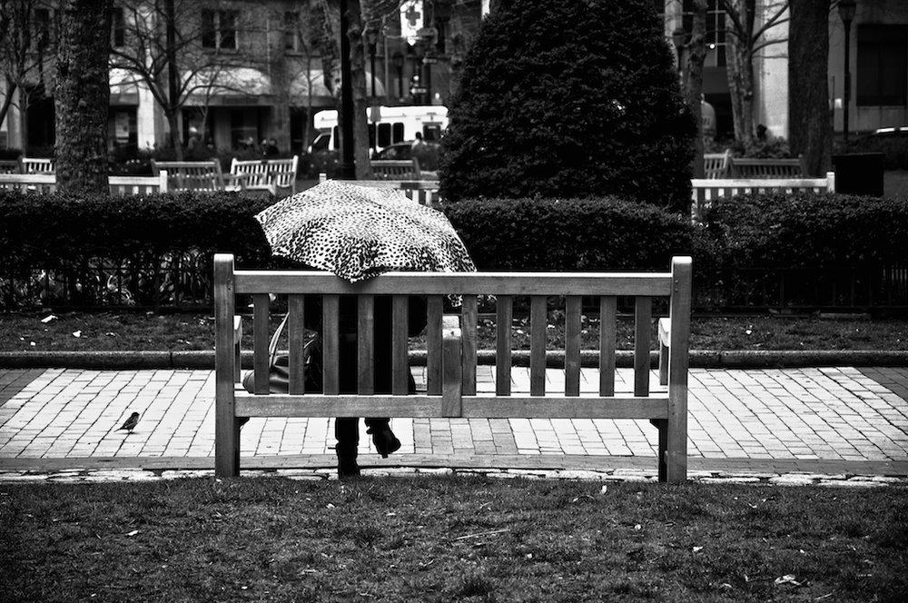 Rittenhouse Park.jpg