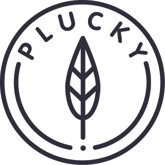 The Plucky Blog; Home of courageous creativity.