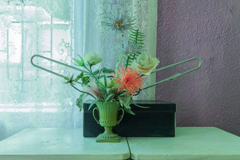 Flowers, Lantana Road, Uitsig, 2013