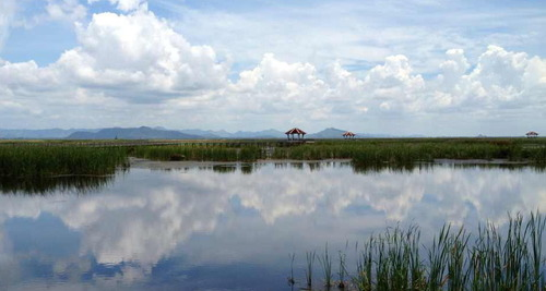 Sam Roi Yot Wetlands, by Amy