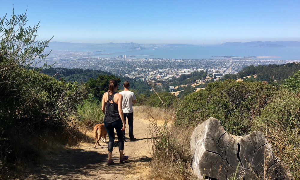 Hiking Grizzly Peak in the SF Bay Area