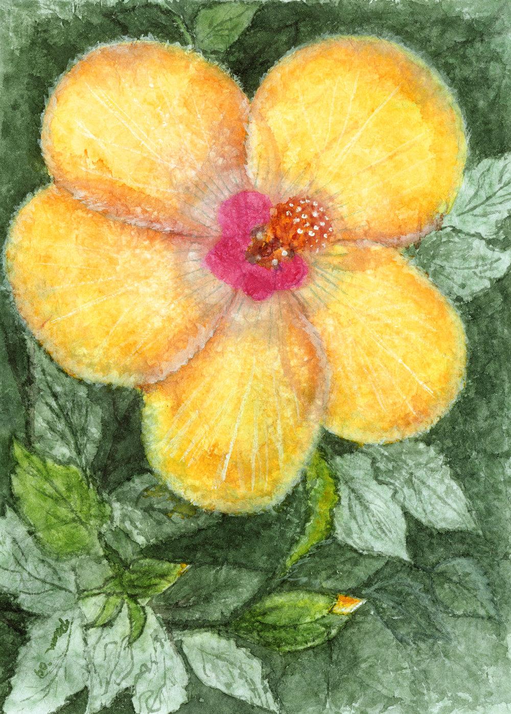 Pam's-flower.jpg