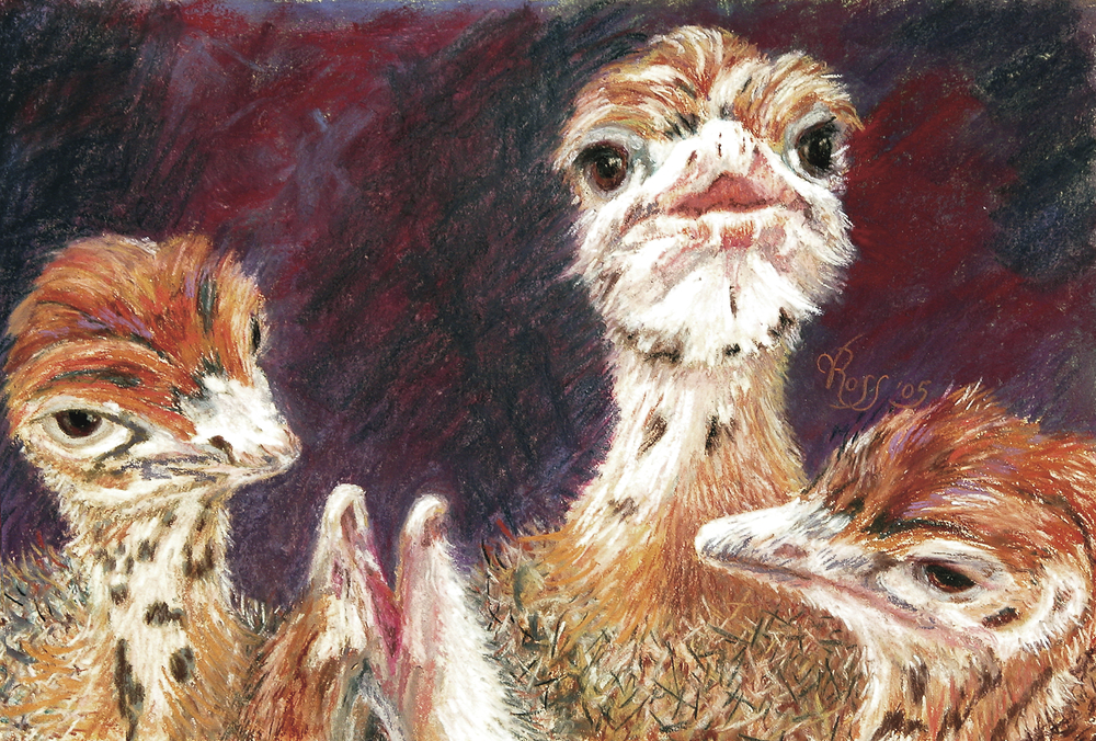 """Buy prints and greeting cards HERE! """"Outsdoorn Babes"""" 12"""" x 16"""" pastel © V.N.Ross"""