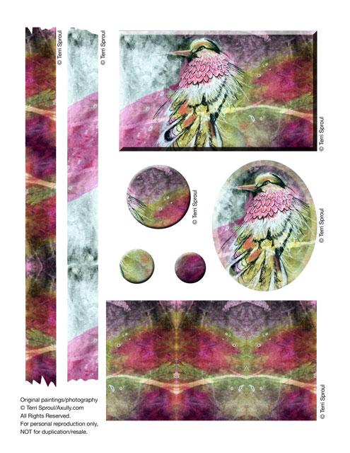 Terri-bird.jpg