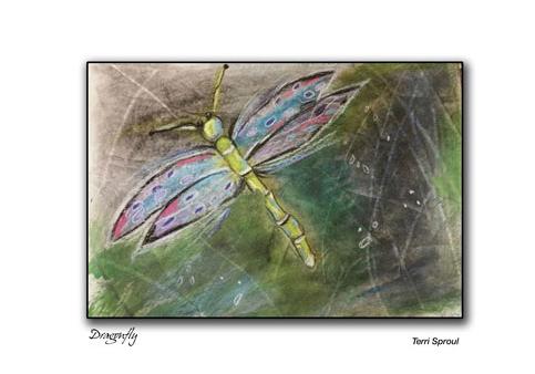 dragonfly-card.jpg