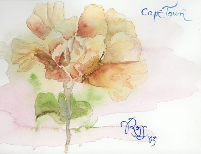 Sketchbook CapeTown Flower