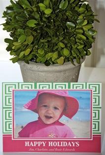Pink Green Lg.jpg