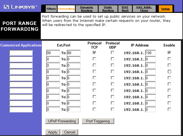 Sample Port Forwarding screen common Linksys Router