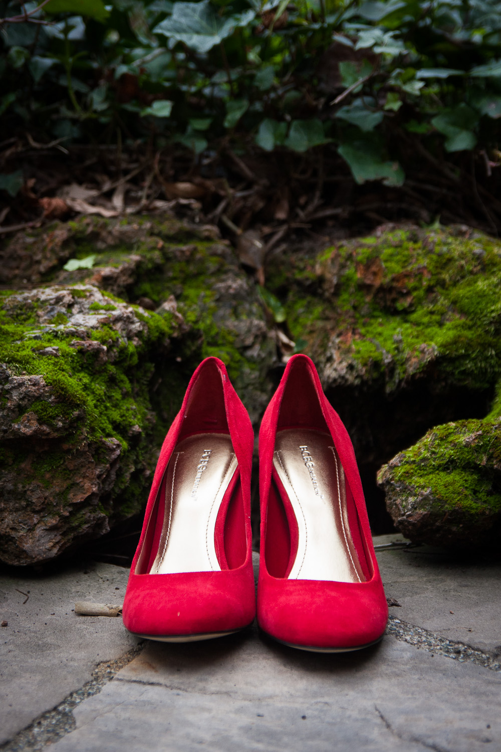 fairy tale shoes