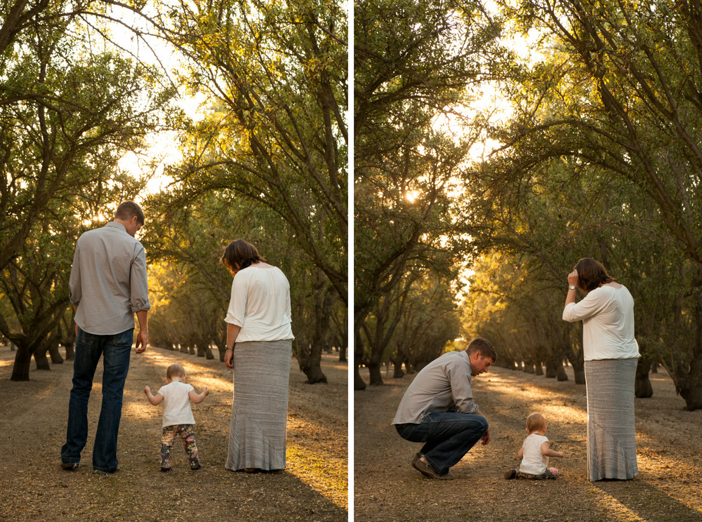 almond orchard portraits