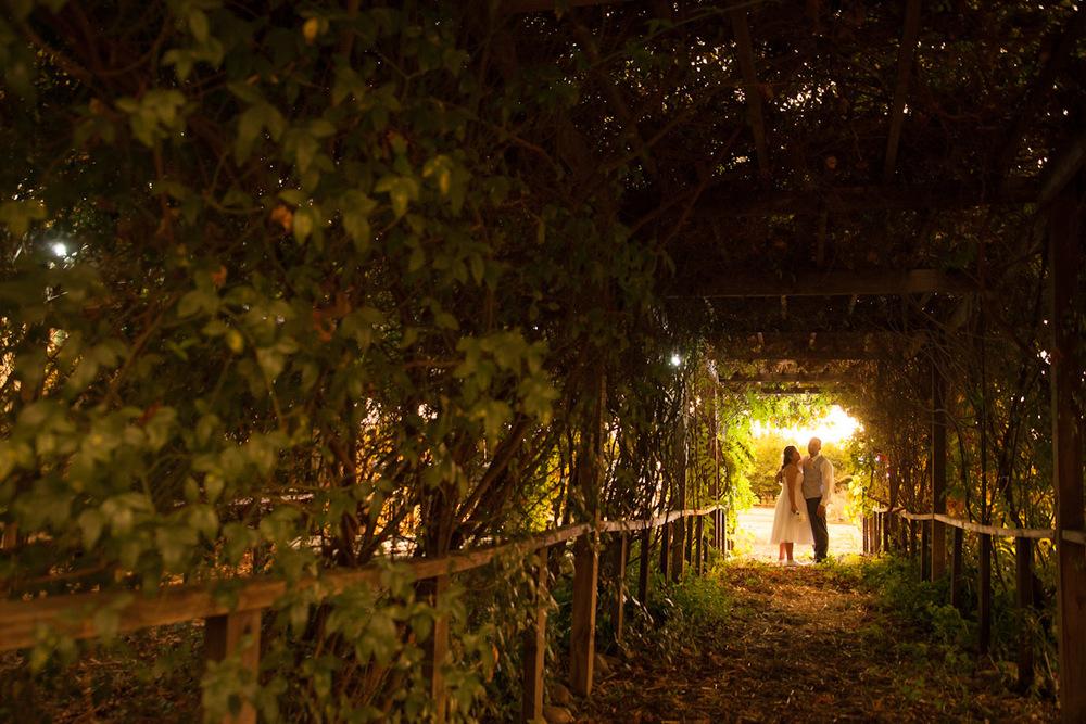 vineyard wedding stockton