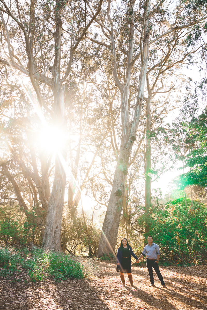 eucalyptus grove engagement san francisco
