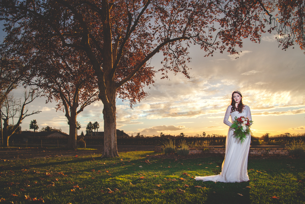 old sugar mill winter wedding