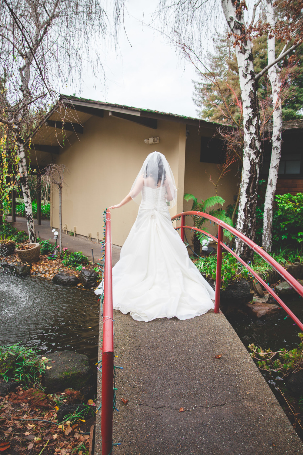 koi pond bride