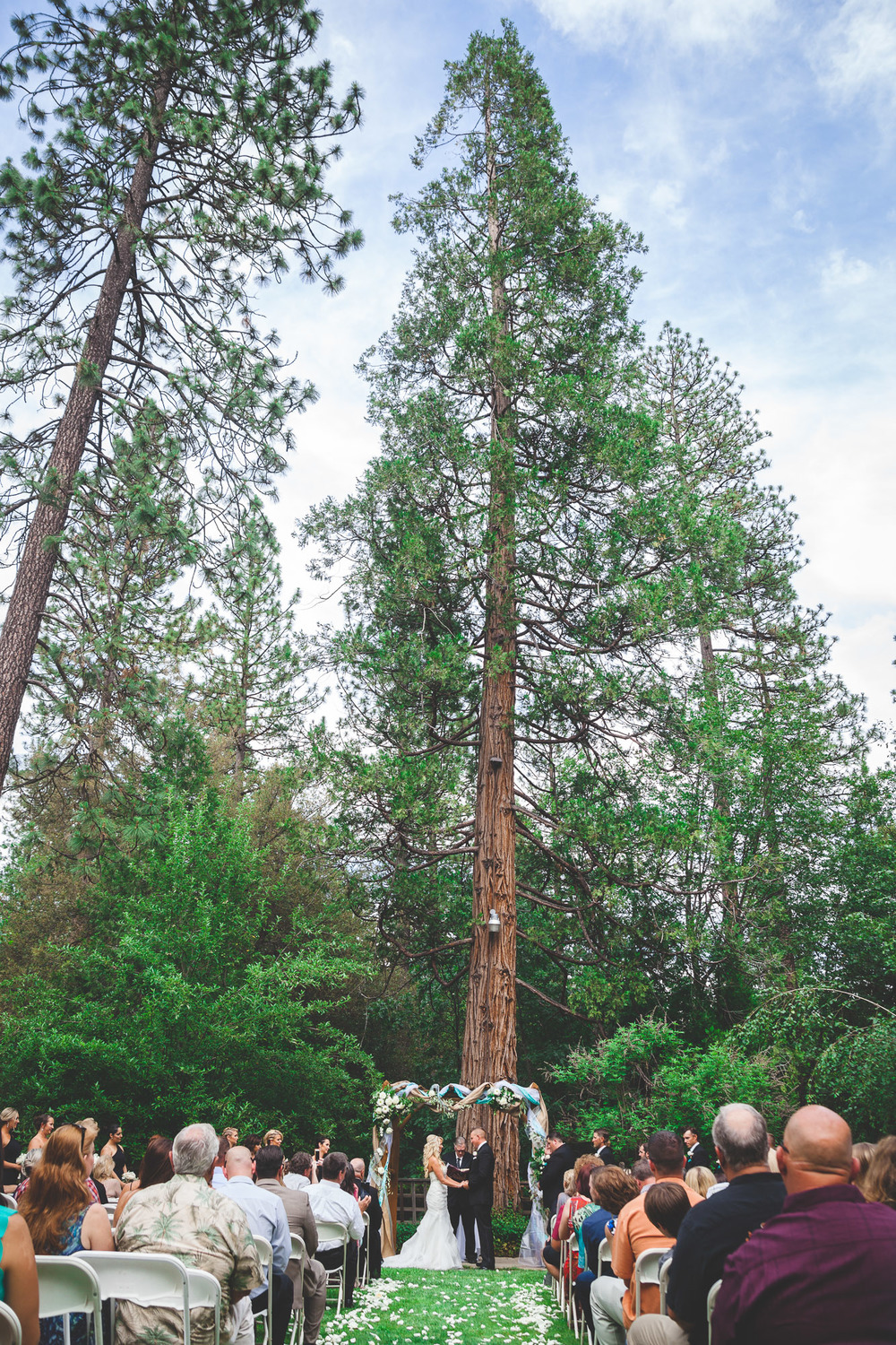 sierra nevada foothills wedding