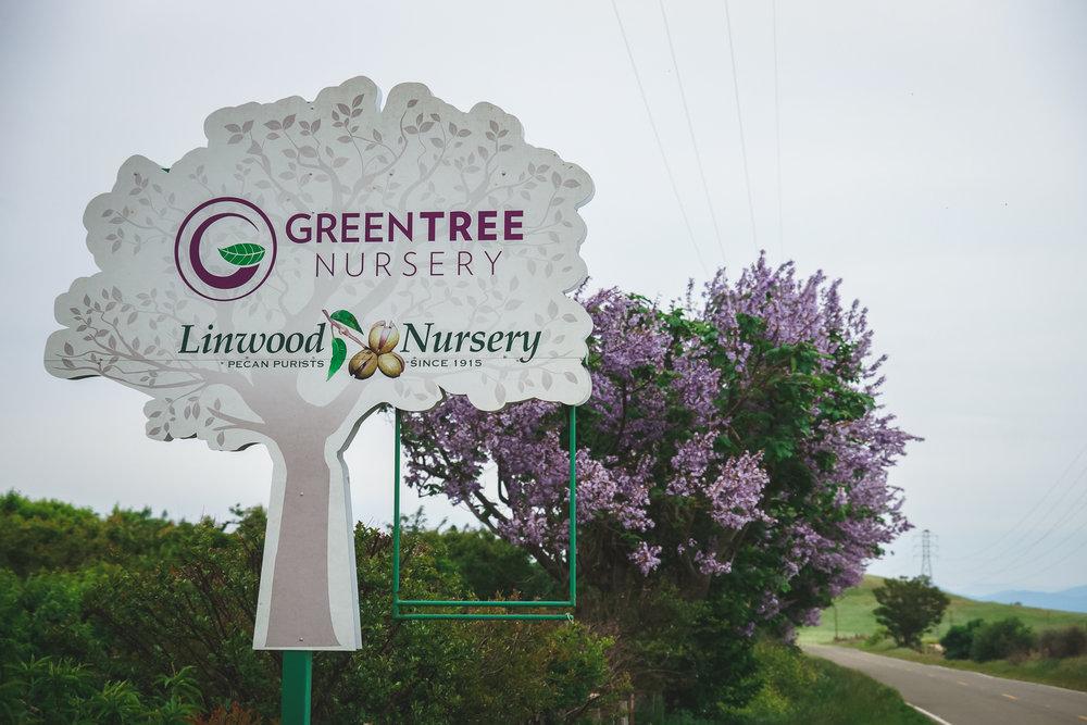 greentree nursery la grange