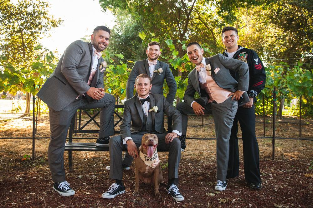 winery wedding central california.jpg