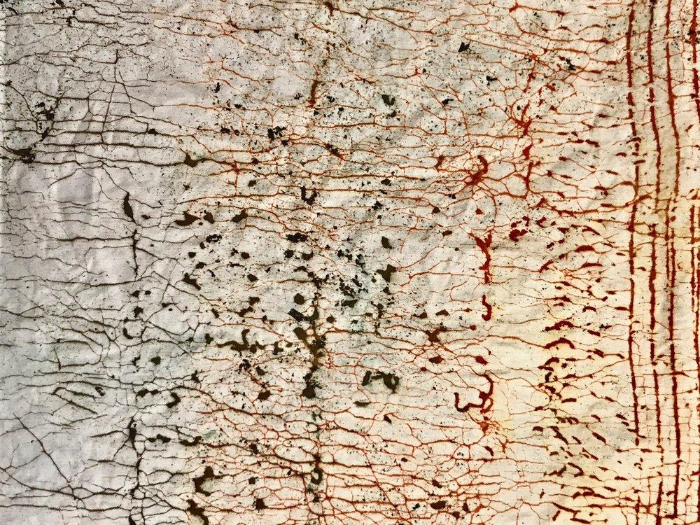 Poetry Of Decay (19).jpg