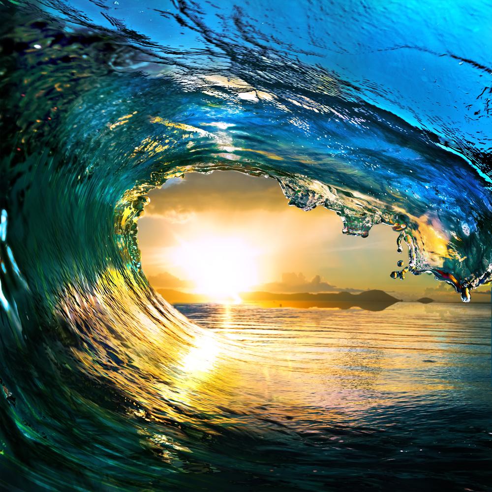 DOV Web Wave.jpg