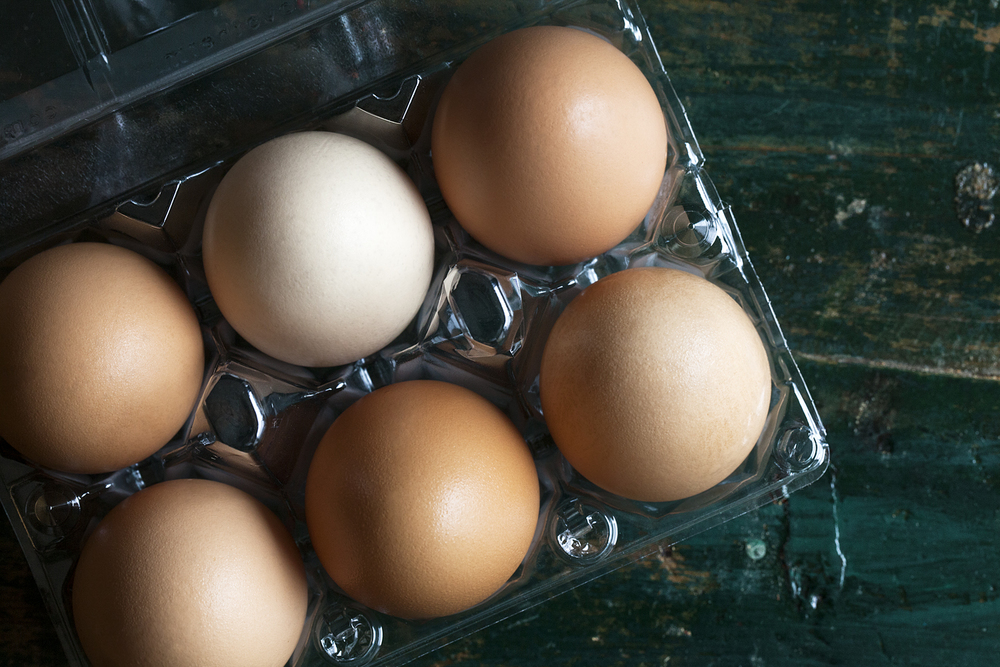 Egg2-9916.JPG