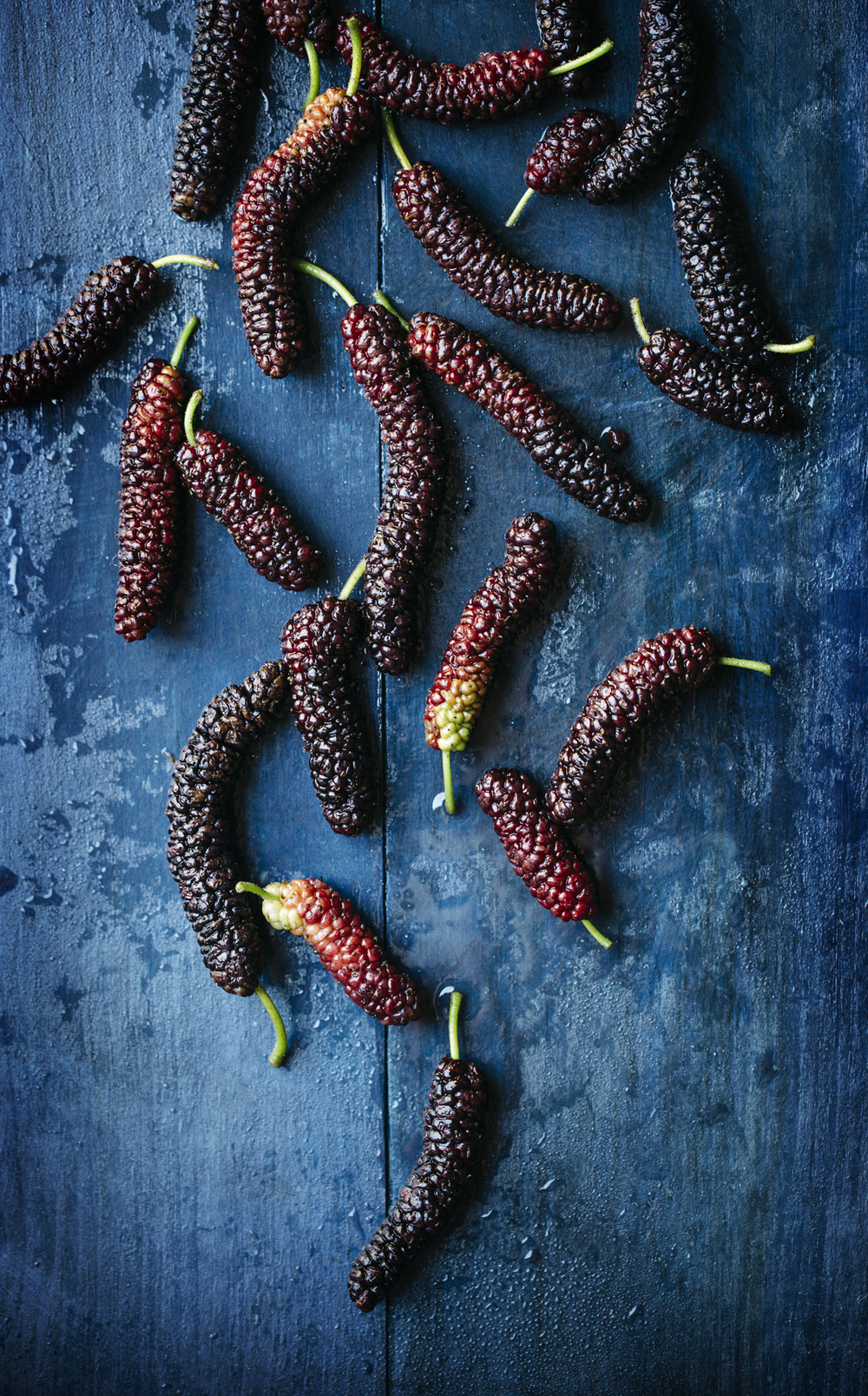 freshly rinsed mulberries