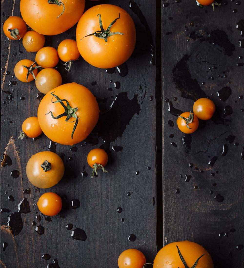 Tomatos-0812web2.jpg