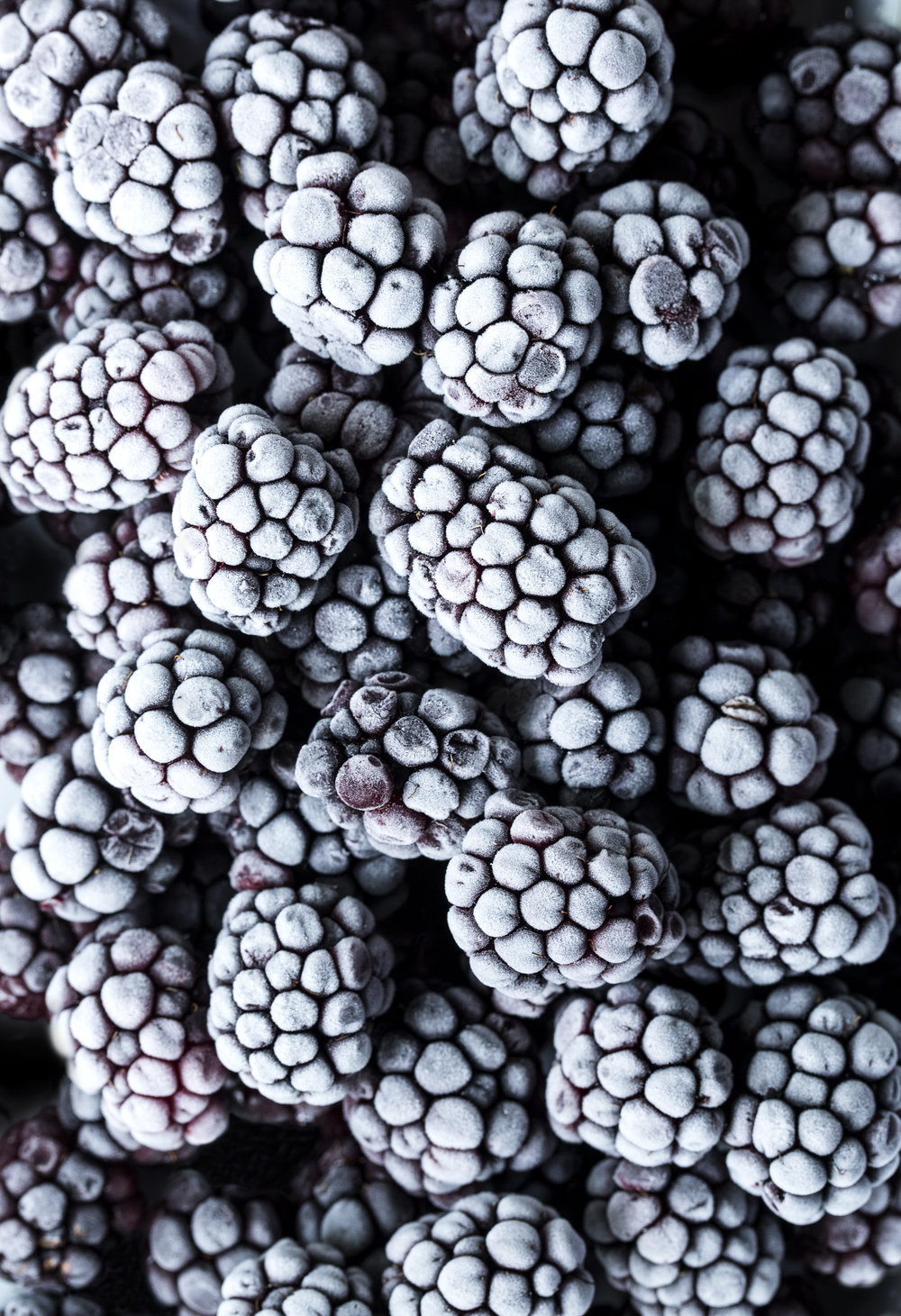 "BLACKBERRIES    Size: 13.689"" x 19.996  Price: $260   AVAILABLE now ON SAATCHIART.COM"