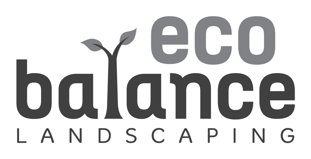 ECO BALANCE 2_grayscale.jpg