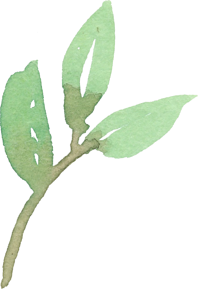 Green_leaves_02.png